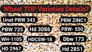 Wheat Dbw173,Hd3086,pbw1105, pbw550, pbw725, Hd2851, unat343, csw18 (PAU, ICAR, IIWBR)