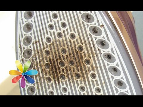 4 популярных способа очистки утюга от накипи