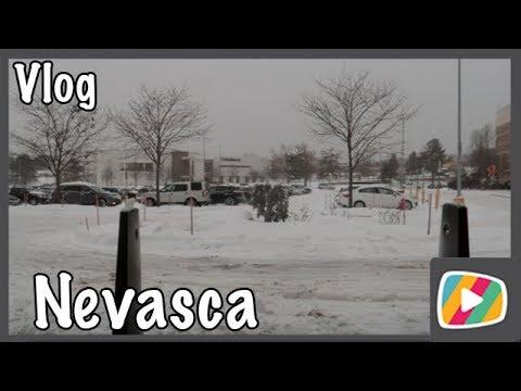 Primeira nevasca de