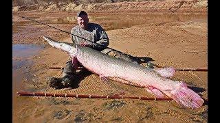 ВОТ ЭТО УЛЁТНАЯ РЫБАЛКА 2019 Вот это приколы на рыбалке #96 Amazing Fishing