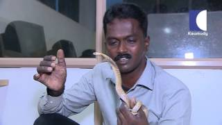 Snake Master EP-162 Vava Suresh Program Full Episode