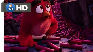 The Angry Birds Movie Hindi (13/14) A Dynamite Defeat Scene MovieClips