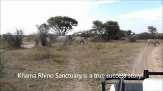 Khama Rhino Sanctuary (Botswana)