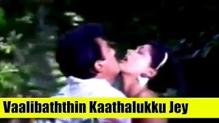 Old Tamil Songs - Vaalibaththin Kaathalukku Jey - Kamal Haasan,Gouthami - Apoorva Sagodharargal