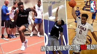 Antonio Blakeney NBA Pre-Draft Workout | LSU Star Tests Vertical, Agility & NBA Skills!