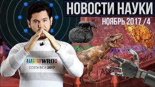 Яйца русских динозавров, нервные роботопротезы и