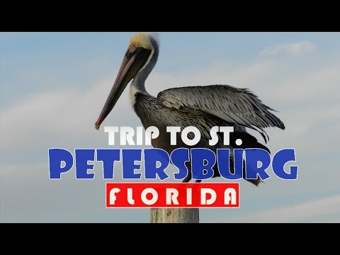 TRIP TO ST. PETERSBURG - FLORIDA