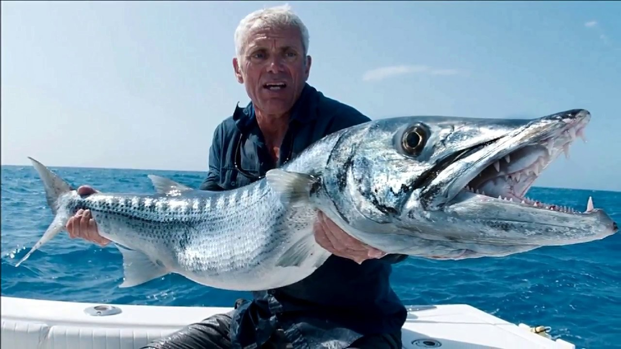Top 10 most fastest fish in the world youtube for Best fishing in the world
