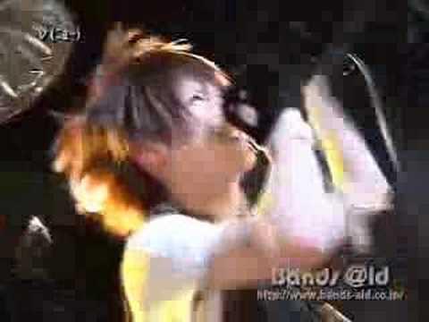Neu HONEY Bee★ Live