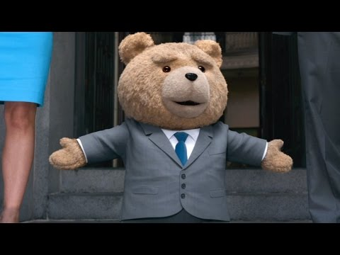 an essay on a teddy bear