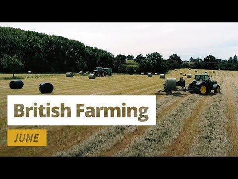 British Farming | 12 Months On A UK Farm: June