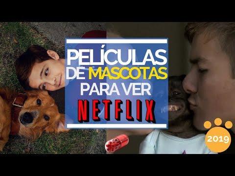 Películas de mascotas / animales en Netflix | 2019
