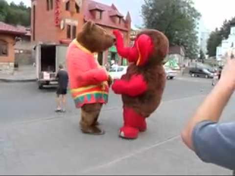 Медведь и слон