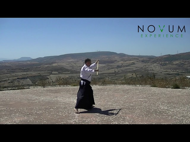 10 Gyaku yokomen ushiro tsuki - Aikido Novum Experience - Jo Suburi Nijuppon- 逆横面後ろ突き-杖素振り20本-打ち込み5本