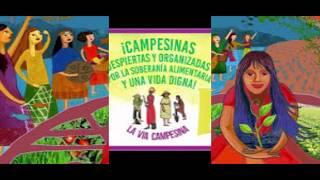 LA VOZ DE ANAMURI 5:  DÍA INTERNACIONAL DE LAS LUCHAS CAMPESINAS 17 ABRIL 2020