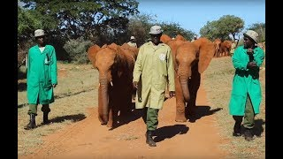 Ngilai, Murit and Godoma move to Voi