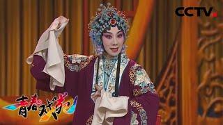 《青春戏苑》 20200324 京韵芬芳| CCTV戏曲