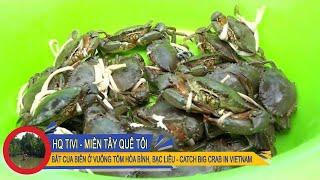 Miền Tây Quê Tôi Tập 8 - Bắt Cua Biển ở vuông tôm Hòa Bình, Bạc Liêu [Catch BIG Crab in VIETNAM]