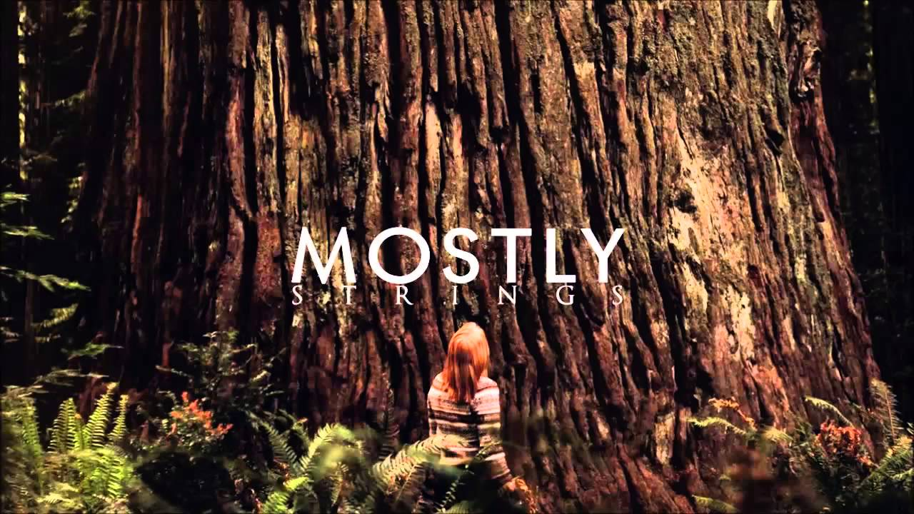 the-paper-kites-st-clarity-m-o-s-t-l-y-strings