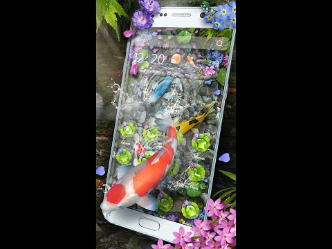 3D koi fish Theme