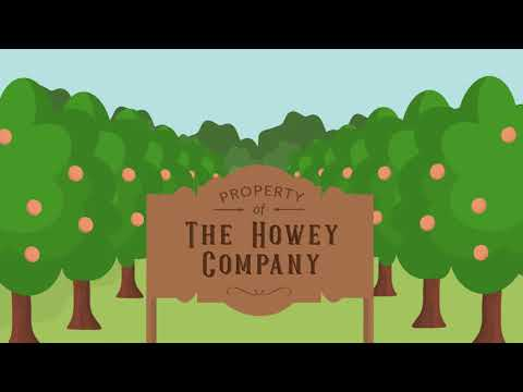Securities and Exchange Commission v. W. J. Howey Co. Case Brief Summary | Law Case Explained