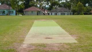 LAKEMBA CRICKET (AUSTRALIAN NATIONAL SPORTS CLUB)
