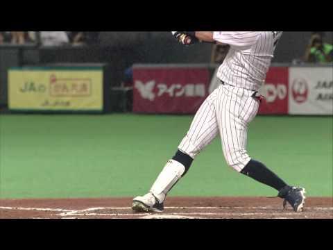 MLB AT SJP - November 18, 2014