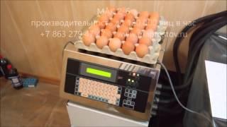 маркировка яйца мак 2-6(Компания МАП сайт http://www.maprostov.ru производит маркировочное оборудование для нанесения маркировки бесконтакт..., 2016-03-29T09:16:15.000Z)
