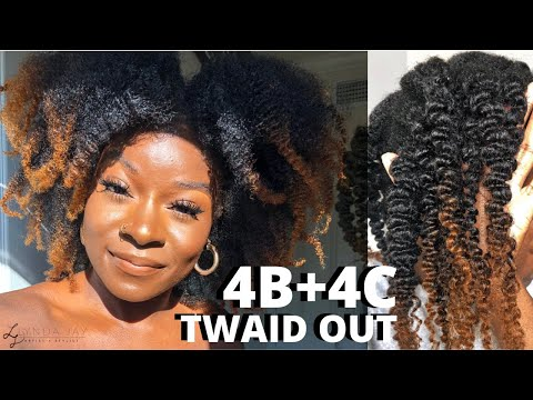 i-put-grease-in-my-hair-for-the-first-time-in-8-years|twaid-out|4c-start-to-finish-wash-daylynda-jay