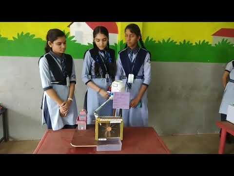 Science exhibition class 9 suman,mahak, Anushka at dream India school Simga