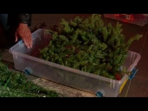 How to properly dispose a Christmas tree after the holidays