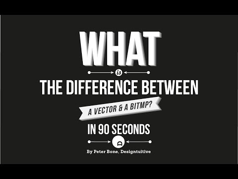 Whats the difference between a bitmap graphic and a vector?