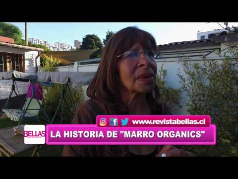 BELLAS - Marro Organics - Bloque 1