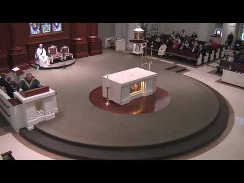 Homily for the Seventh Sunday in Ordinary Time