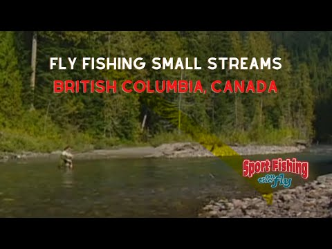 How To Fly Fish Small Rivers - 08