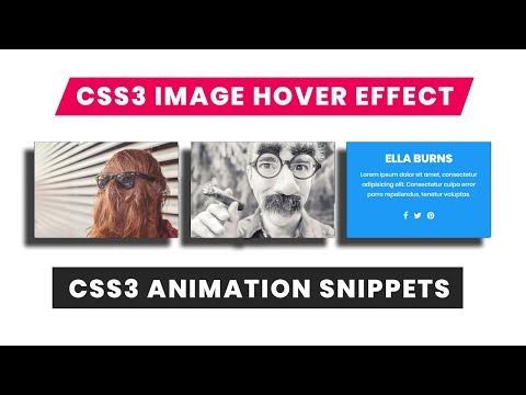 Image hover effect with css3 | CSS3 Animation Snippets | Web Design