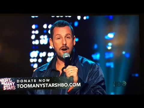 Adam Sandler Night of Too Many Stars 2017