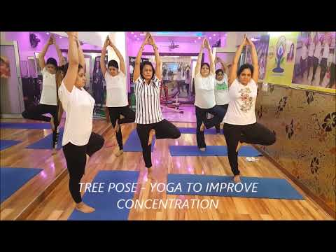 yoga to improve concentration  vrikshasana  tree pose