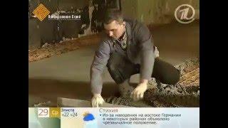 Эксперты на Первом канале