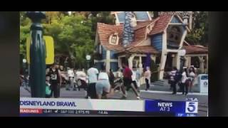 Funny news report on fight at Disneyland