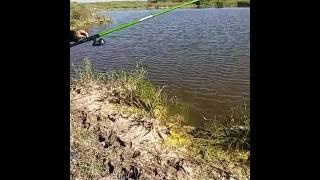 Шетыргыз рибалка