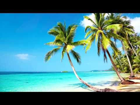Beach Party Music | Tropical Mexican Beach | Relax, Work, Study & Ambience