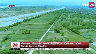 Vĩnh Phúc: Người dân dùng dung dịch lạ tưới cây trồng  - Tin Tức VTV24