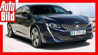 Peugeot 508 (2018) Erste Fahrt / Details / Review