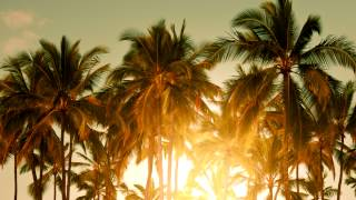 Baz Luhrmann - Wear Sunscreen (Mau Kilauea