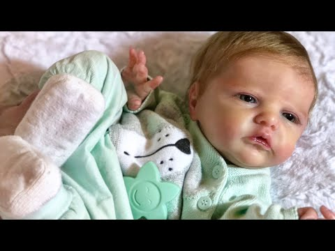 Selling an Altered Reborn DOLL, Dishonest eBay Sellers, Atrocious Dolls & more...