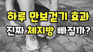 하루 만보걷기 다이어트 효과  진짜 체지방 빠질까? screenshot 4