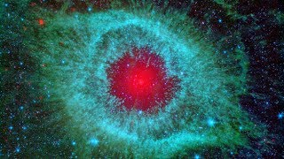 What is the Meaning of Life, in Relation to the Universe?