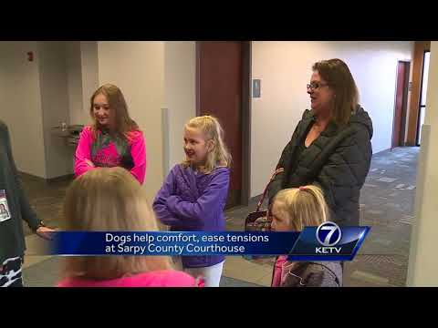 Dogs help comfort, ease tensions at Sarpy County Courthouse