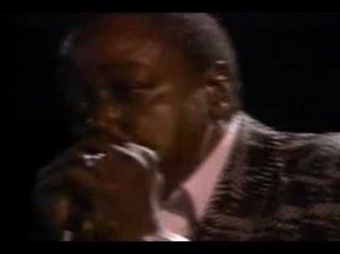 Willie Dixon & Chicago Blues Old Stars - Seventh Son